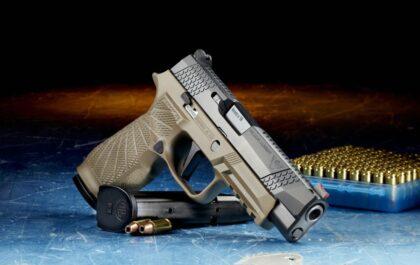 5 Cheap Guns Under $250